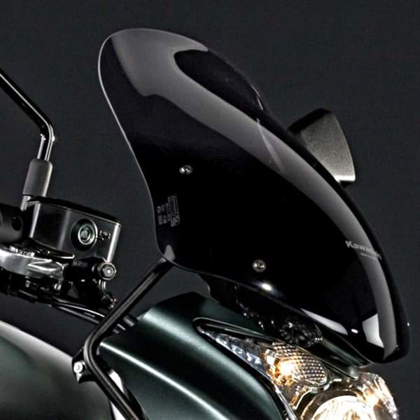 Picture of Kawasaki R-6n Touring-Scheibe