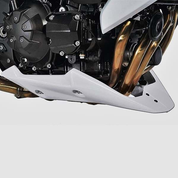 Picture of Kawasaki Z1000 Bugspoiler